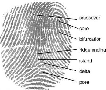 ROSISTEM Bar Code » Biometric Education